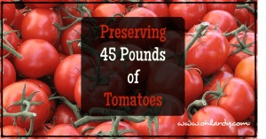 Preserving 45 Pounds of Tomatoes - www.ohlardy.com