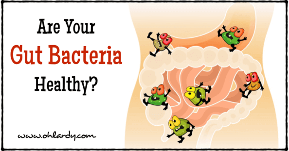 Are Your Gut Bacteria Healthy? - www.ohlardy.com