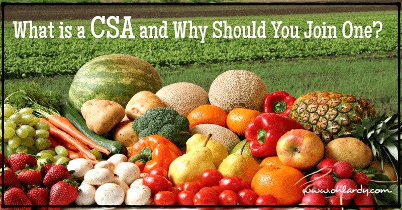 What is a CSA and Why Should You Join One? - www.ohlardy.com