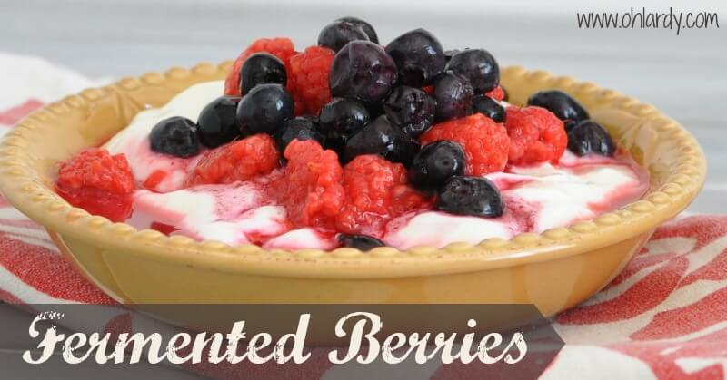 Fermented Berries - www.ohlardy.com