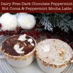 Dairy Free Dark Chocolate and Peppermint Latte - www.ohlardy.com