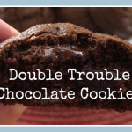 Double Trouble Chocolate Cookies - www.ohlardy.com