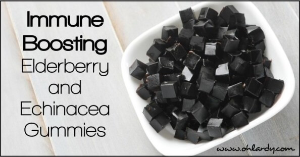 Immune Support Elderberry and Echinacea Gummies