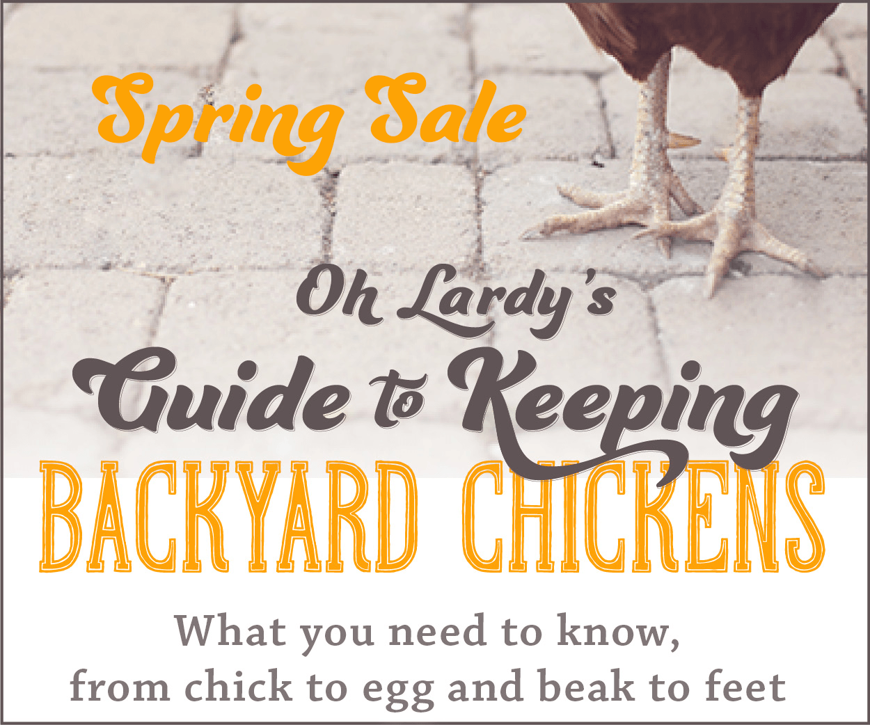 Oh Lardy's Guide to Backyard Chickens