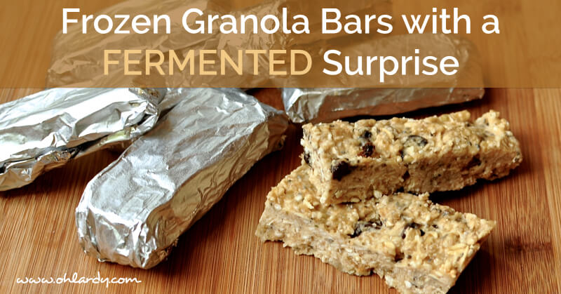 Frozen Granola Bars with Fermented BANANAS!!! - www.ohlardy.com