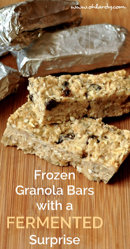 Frozen Granola Bars with Fermented Bananas! - www.ohlardy.com