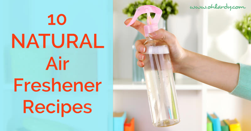 10 Favorite Homemade Air Freshener Recipes Oh Lardy