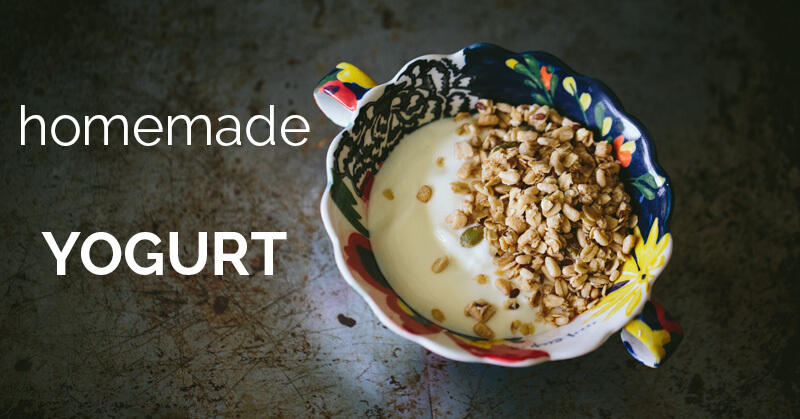 Homemade Yogurt - ohlardy.com