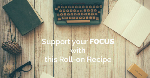 support your focus - ohlardy.com