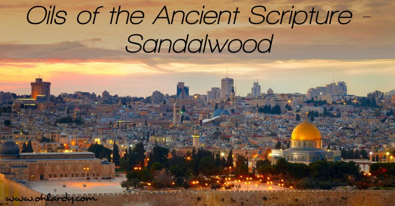 Oils of the Ancient Scripture - Sandalwood
