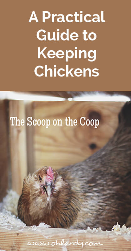 A practical guide to keeping chickens, scoop on the coop - ohlardy.com