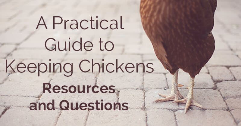 A practical guide to keeping chickens, resources - ohlardy.com