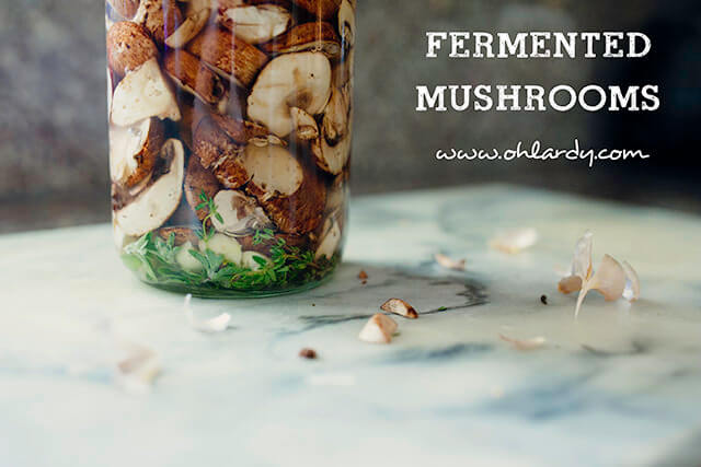 Fermented Mushrooms