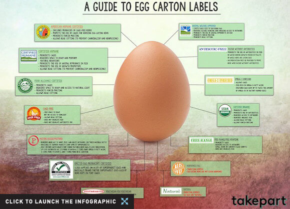 Guide to Egg Labels