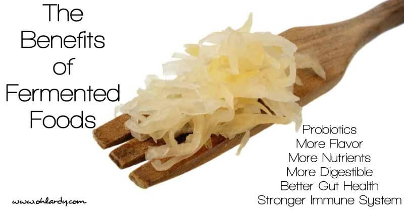 7 Benefits Of Fermented Foods Oh Lardy