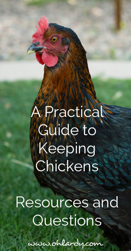 A Practical Guide to Keeping Backyard Chickens - Resources and Questions