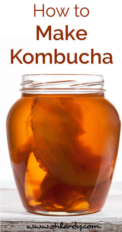 How to Easily Make Kombucha Tea - www.ohlardy.com