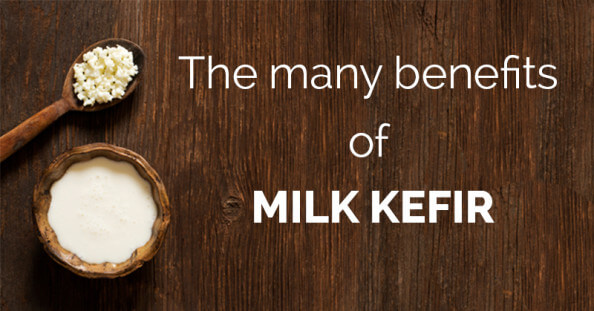 The many benefits of milk kefir - ohlardy.com